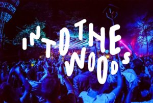 5 acts to see at Into The Woods Festival 2017